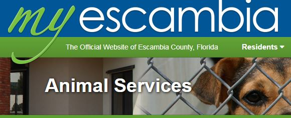 Escambia County Animal Services Pet Friendly Sites
