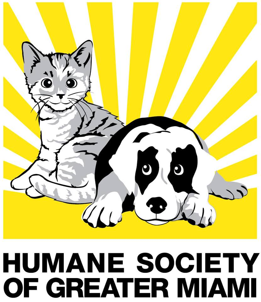 Humane Society North Miami Beach Fl