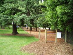 Normandale Dog Park Portland, OR